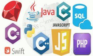 زبان های برنامه نویسی تحت وب